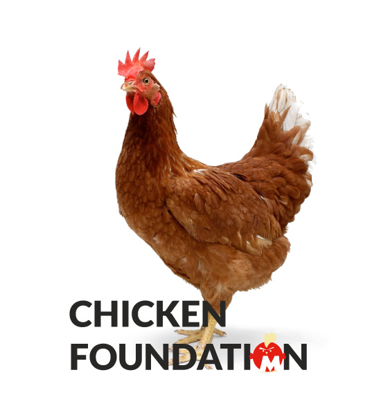 Chicken Foundation Campaign Grand Cayman