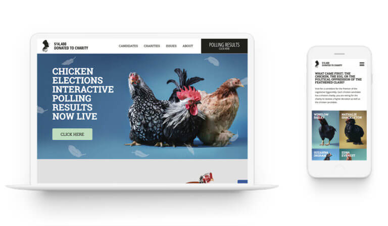Chicken Elections - Branding. Market Research. Design. Web Development.